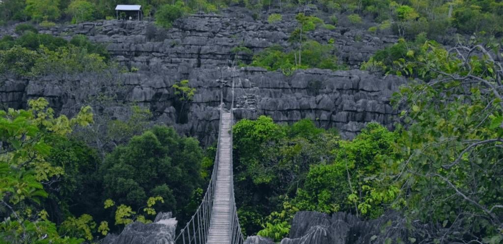 Ankarana Nationaal Park